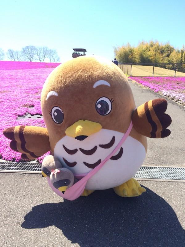 市貝町のマスコットキャラクター『サシバのサッちゃん』